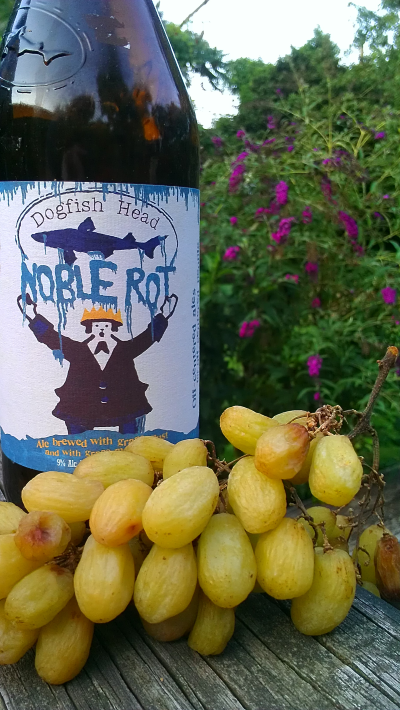 Noble Rot – The Dog(fish Head) Days ofSummer