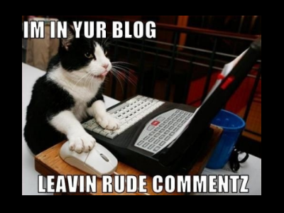 Pitfalls to Avoid when Writing a Scathing Blog Comment or, Why Not Just BeNice?