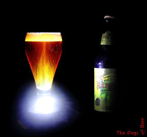 Class in a Glass: Sierra Nevada Harvest Single Hop IPA(Equinox)